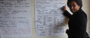 Fig 1: Capturing notes during a focus group discussion in Embu, Kenya